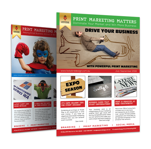 Ladybird Design Print Marketing Newsletter - Free Business Subscription